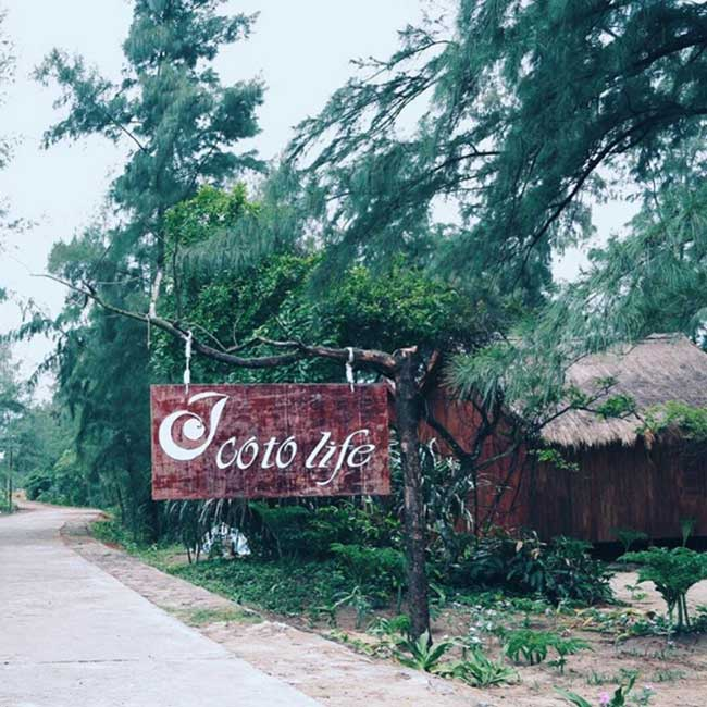 loi-vao-coto-life